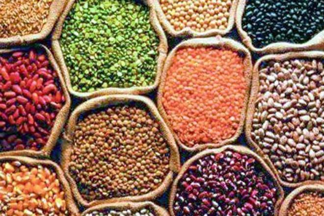 ias4sure.com - Issues of pulses in India