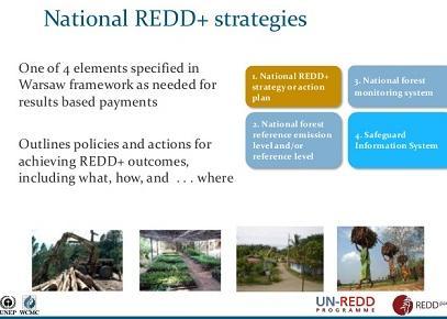 ias4sure.com - national redd